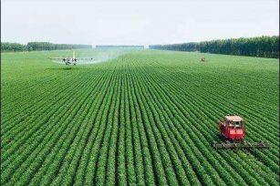 2017年中国有机肥市场调查及前景分析