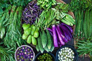 保持有机果蔬作物系统的土壤肥力