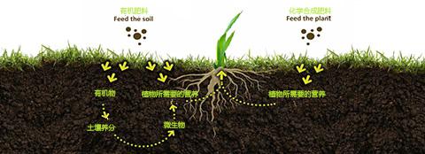 有机肥料和化学合成肥料之间的区别