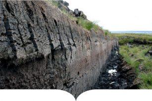 泥炭开采未引起人们的注意