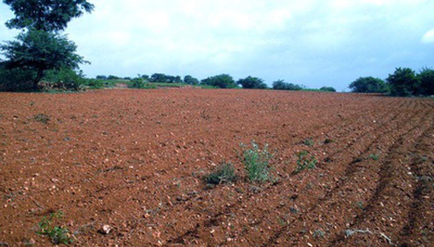 绿康有机肥每周一堂课:如何使粘土更好适合耕作