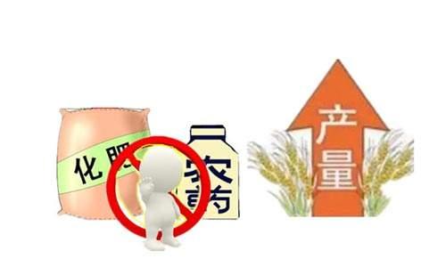 有机肥料哪家好_成都绿康有机肥有限公司_鸡粪有机肥_有机肥价格_鸡粪发酵_花卉有机肥_蔬菜有机肥_水果有机肥