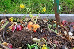 如何制作栽培用营养土