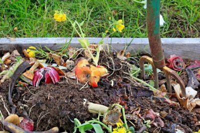 DIY|绿康有机肥教您如何制作栽培用营养土