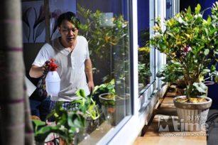爱上花卉园艺,致上这篇文章