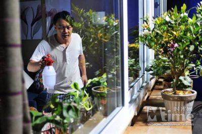 爱上花卉园艺-致上这篇文章