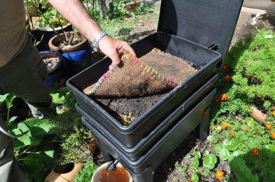 如何堆肥厨房垃圾在6步骤!