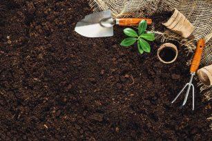 了解土壤修正,可以从身边开始!