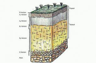 表土和底土与基岩之间有什么区别?