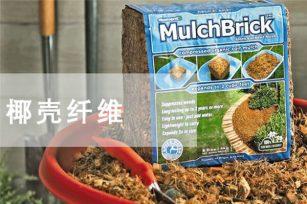 椰子纤维是泥炭土真正的环保替代介质吗?