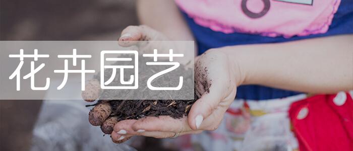 花卉园艺_绿康有机肥