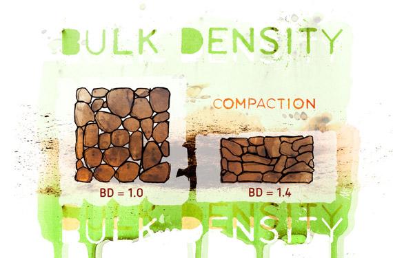 土壤堆积密度