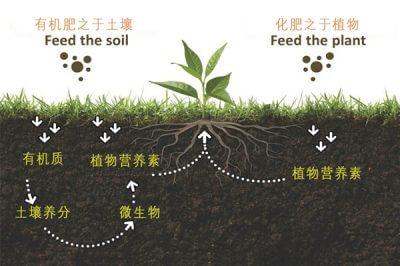 什么是有机肥,有机肥和化肥有什么区别,国家为什么鼓励有机肥?