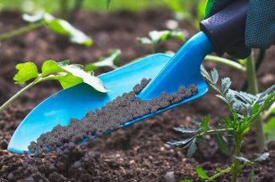 生物有机肥和农家肥哪个效果好?