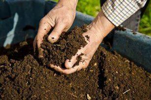 为何用了生物有机肥还要配合施用施化学肥料吗?