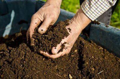 家庭养花营养土配制的方法有哪些?