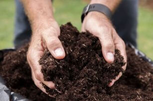 微生物菌剂和生物有机肥有哪些区别呢?
